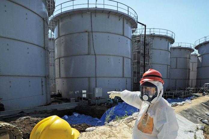 Deformed Vegetables, Fruit Reportedly Pop Up Around Japan Nuclear Plant.