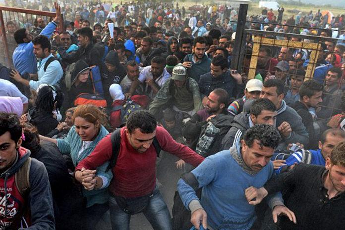 An EU Migrant Every 40 Seconds