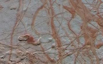Europa's Ocean May Have An Earthlike Chemical Balance