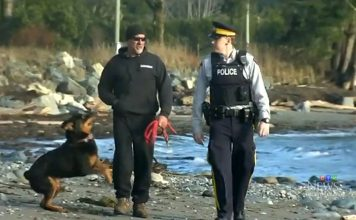 13th Human Foot Washes Ashore In Canada