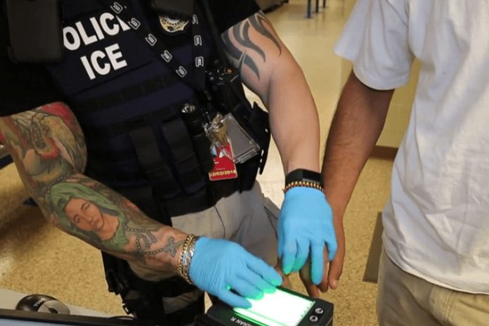 101 Illegal Immigrants Arrested In Latest ICE Operation