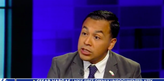Illegal Immigrant Lawyer Compares Overstaying Visas To Getting A Parking Ticket